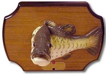 singing-fish unique ideas