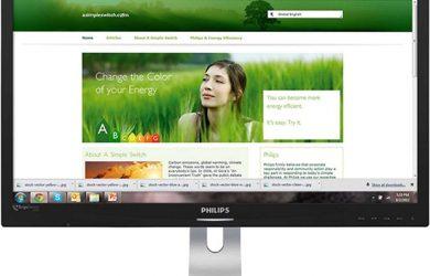 Philips-ErgoSensor